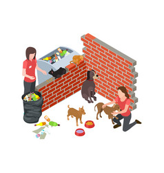 stray animals problem stray dogs cats care vector image