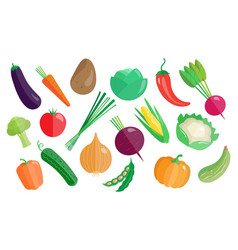 vegetables big set healthy vegetarian food vector image