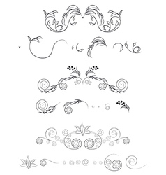 floral shapes set vector image