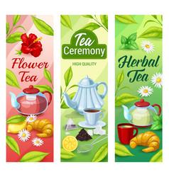 Green black and herbal tea beverage banners vector