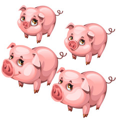 pink cute shy pig in cartoon style animal vector image