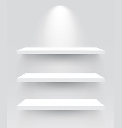 shelves with spotlight vector image