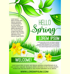 green floral poster for hello spring design vector image vector image