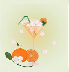 orange fruits fresh cocktail glass summer drink vector image