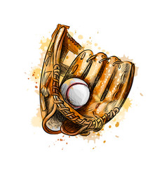baseball glove with ball from a splash of vector image