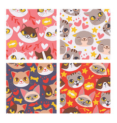 cat face seamless patten cute vector image