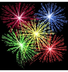 Colorful fireworks in honor independence day on vector