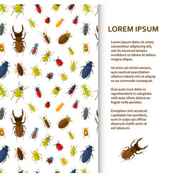 Flat poster or banner template with bugs vector