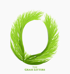 letter o of juicy grass alphabet green o vector image