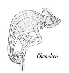 Hand drawn doodle outline chameleon vector image vector image