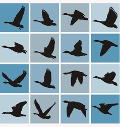 wild geese pattern vector image