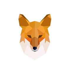 head of a red fox modern polygonal style vector image