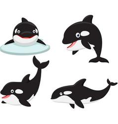 killer whale cartoon collection set vector image