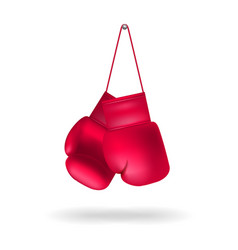 boxing gloves on a nail vector image