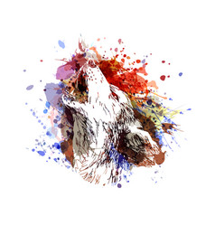 color of a howling wolf vector image