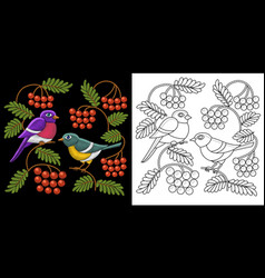 embroidery birds design vector image