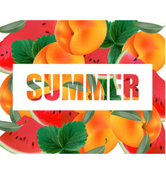 summer appricot and watermelon background pattern vector image