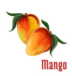 Mango fruit icon for food juice packaging design vector image vector image