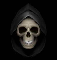 Flaming Skull death 01 vector image vector image