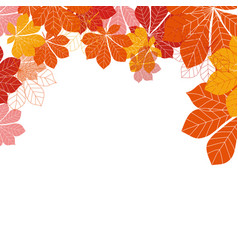 abstract autumn leaves on white background vector image