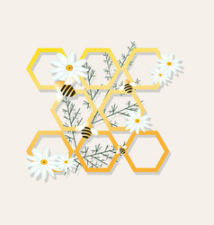 bees and honeycombs chamomile vector image