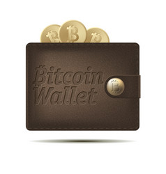 bitcoin wallet with coins isolated on white vector image