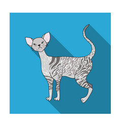 Cornish rex icon in flat style isolated on white vector