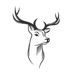Deer head on white background vector