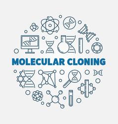 Molecular cloning outline round vector