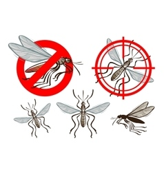 Pest control mosquito icon set vector