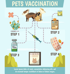 Pets compulsory vaccination orthogonal flowchart vector