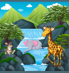 scene wtih wild animals at the waterfall vector image