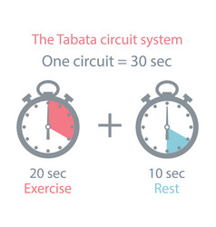 The tabata circuit system vector