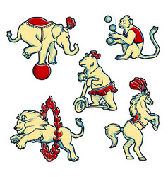 Set of retro vintage style circus trained wild vector