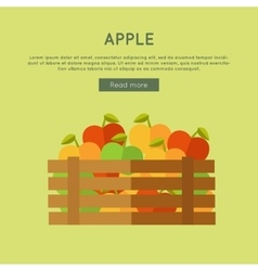 Apple Web Banner in Flat Style Design vector image
