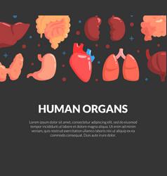 Human organs banner medical science innovation vector