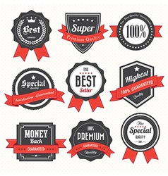 Set of retro vintage badges and labels vector image vector image