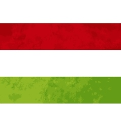 True proportions Hungary flag with texture vector image vector image