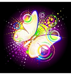 Butterfly abstract background vector