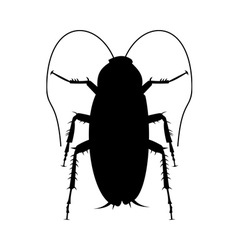 Cockroach silhouette vector