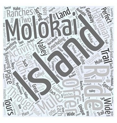 The hawaiian island of molokai word cloud concept vector