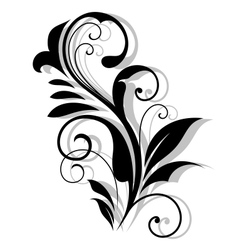 Curly floral embellishment vector image vector image