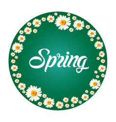 spring frame with white chamomile flowers on green vector image