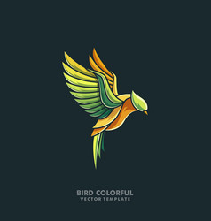 bird colorful line art design template vector image