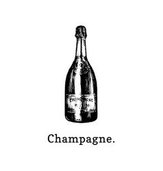 champagne bottle hand vector image