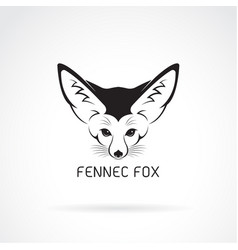 Fennec fox head on a white background wild vector