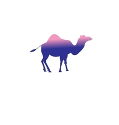 icon of a camel vector image