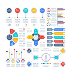 infographics diagrams infochart elements vector image