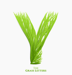letter y of juicy grass alphabet green y vector image