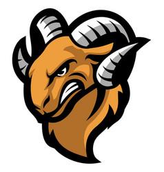 ram mascot head vector image